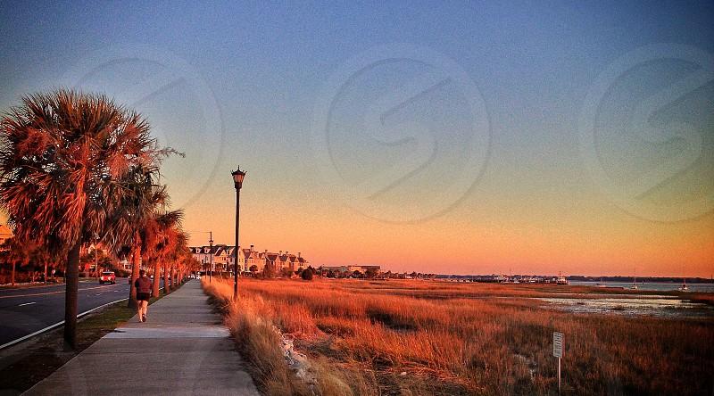 path to a sidewalk  photo
