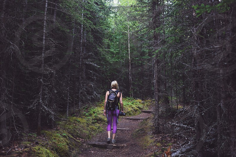 woman with backpack walking near tall tress photo