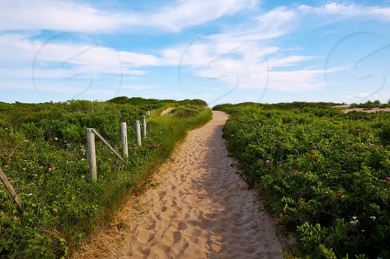 Cape Cod Herring Cove Beach in Massachusetts USA photo
