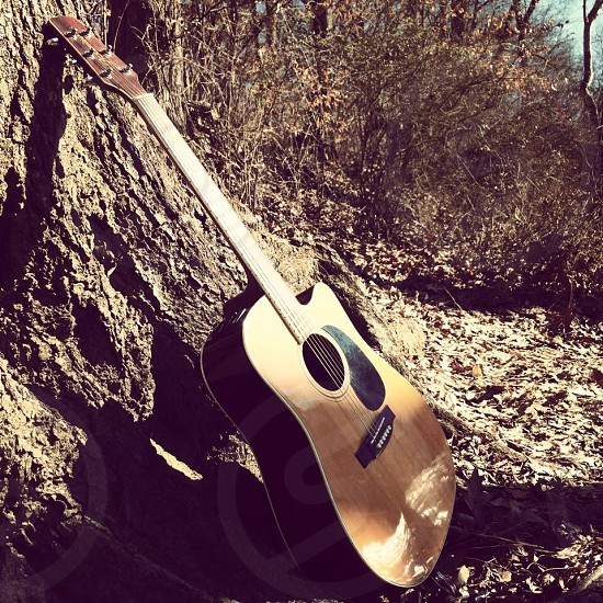 An acoustic guitar in nature photo