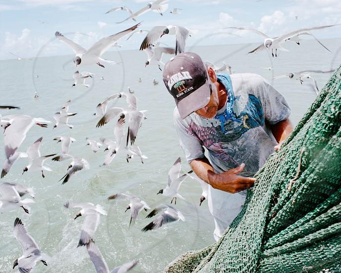 Boat captain ocean sea fishing fisherman seagulls birds net photo