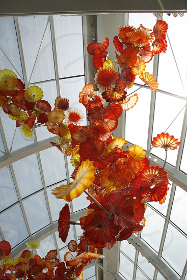 Glass structure hanging from a ceiling. Chihuly Glass Garden Seattle WA.  photo