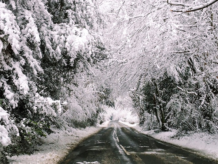 England United Kingdom Southeast tunbridge wells road lane snowed trees tree lined white snow winter cold journey road trip  photo