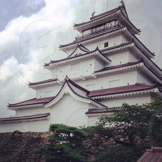 japan  kyathlle JAPANESE shiro photo