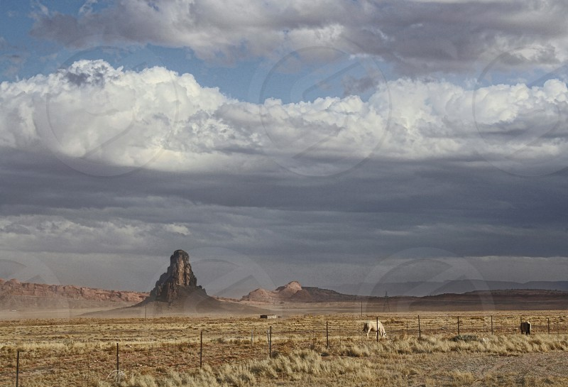 Western landscape with two horses. photo