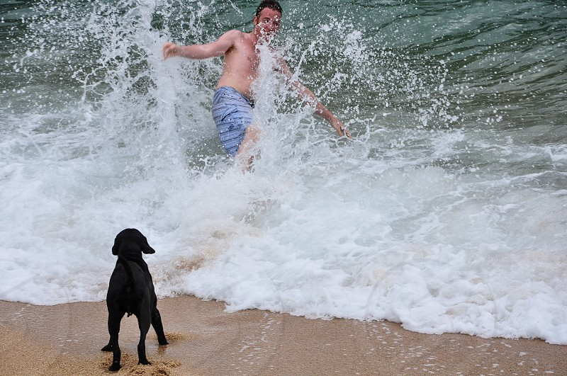 Jumping into the waves photo