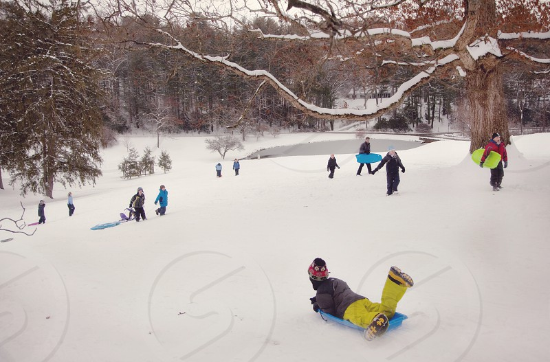 Friends sledding during a snow day in Asheville North Carolina photo