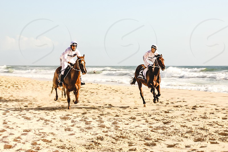 Horses racing along the beach at Surfers Paradise in Queensland Australia  photo