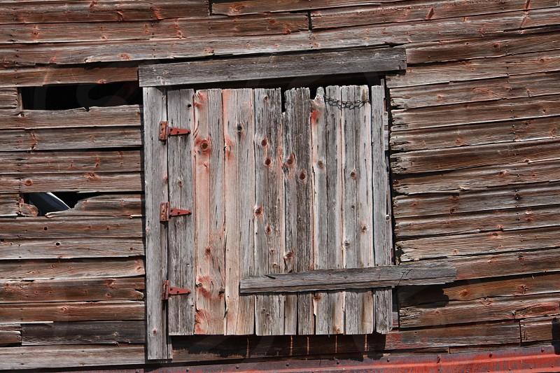 Hay door! photo