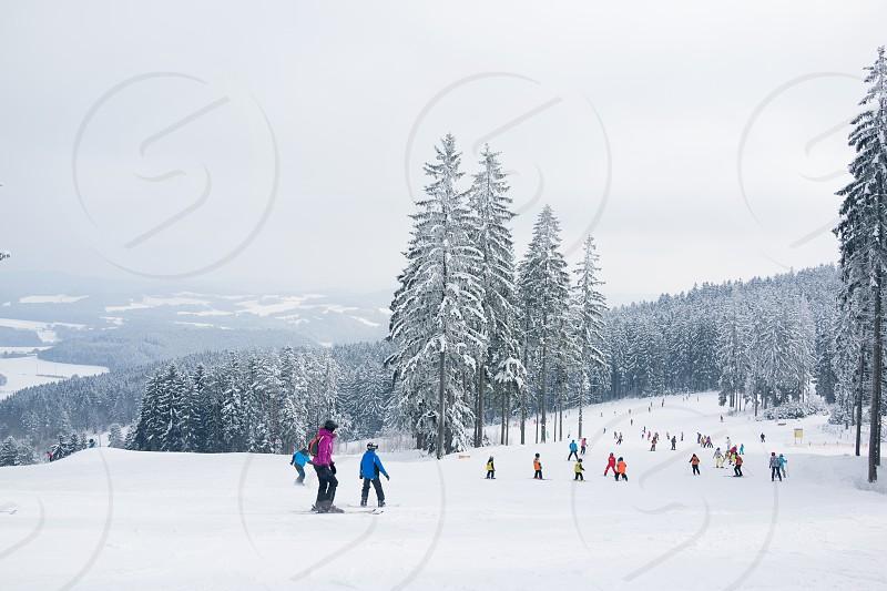 Mountains snow ski slopes trees fog. photo
