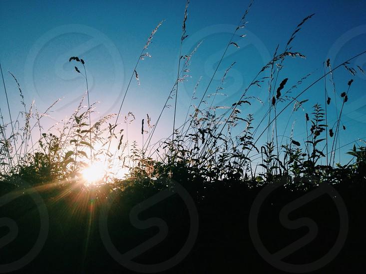 Dusk English countryside photo