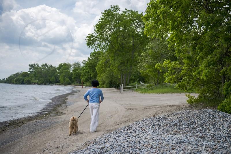 Woman Walking Dog On Beach photo