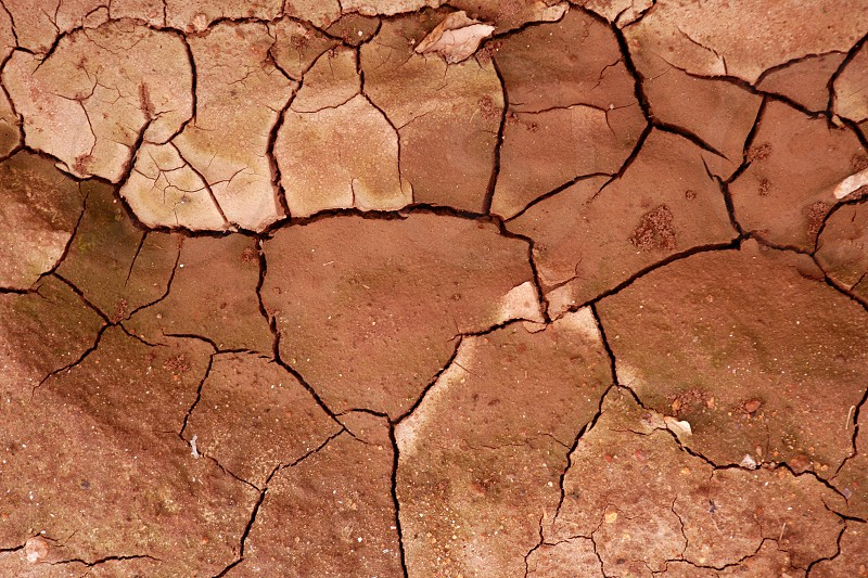 Clay dried red soil cracked texture background dry erath photo