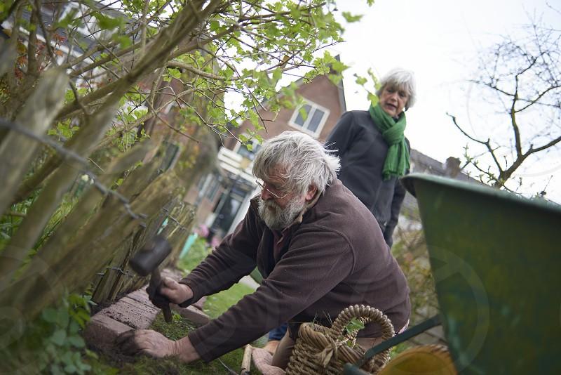 Healthy elderly man hard at work gardening in his back yard photo