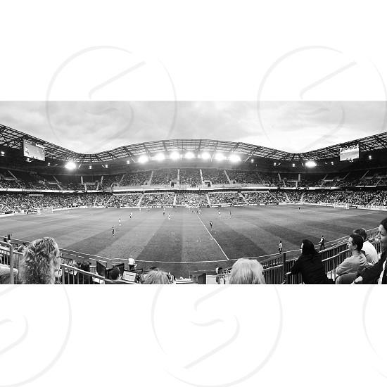 Red Bulls soccer game photo