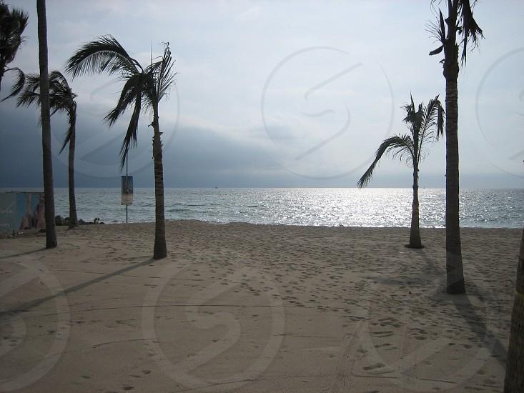 Bahía de Banderas Puerto Vallarta photo