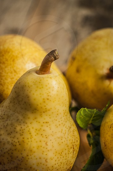 Fruit background. Fresh organic pears on old wood. Pear autumn harvest photo