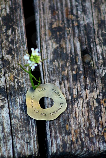 white petaled flower sprout on brass-colored holed decor on brown wood surface photo