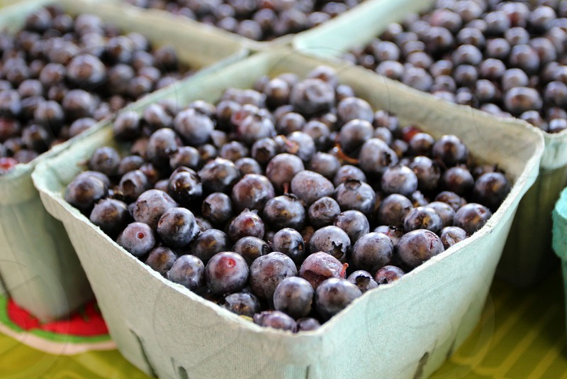 Blueberries in carton at farmers market photo