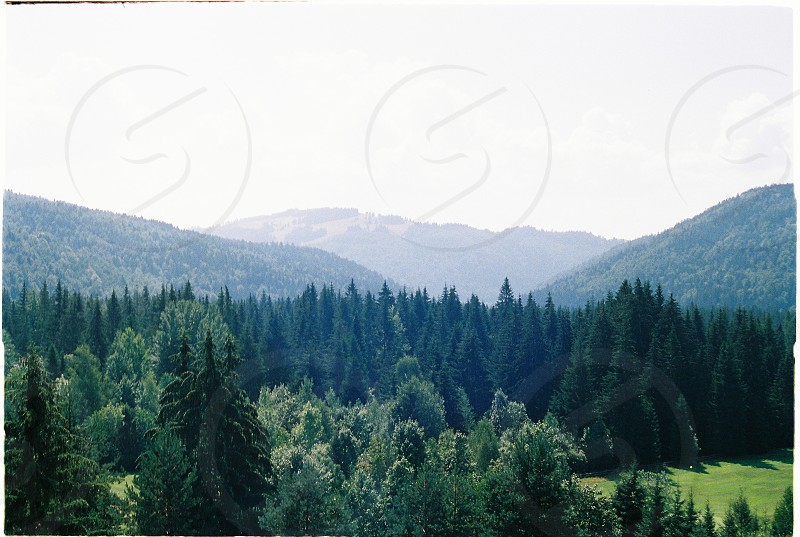 Analogue picture from Slovak mountains 2016. photo