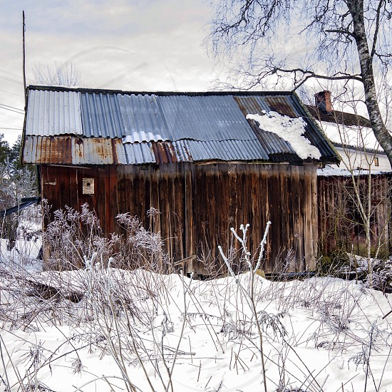 An old shelter...- house - nature - decay - winter  photo