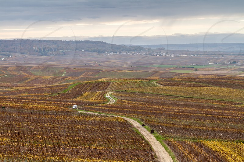 Here is a view of the Champagne vineyard in autumn/fall.  Cellars houses and hillsides of Champagne has been officially listed in the Unesco world heritage sites since June 2015... but to see landscapes like this you might need to hire a car from your favourite car rental company from Reims Epernay or elsewhere. photo