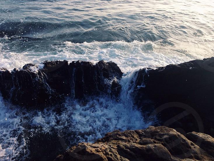 Laguna Beach Tidepools photo