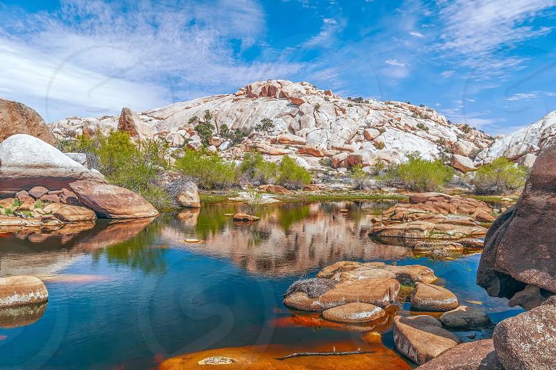 Pond at Barker or Big Horn Dam in Joshua Tree National Park. California. USA photo