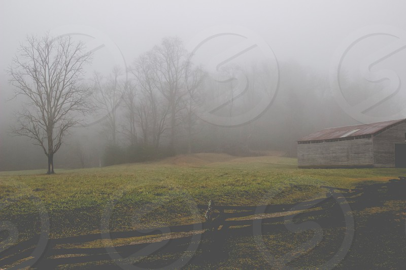 Camping/Cabin Vibes #mist#cabin#trees#nature#fence#mystery#haunting#mountains photo