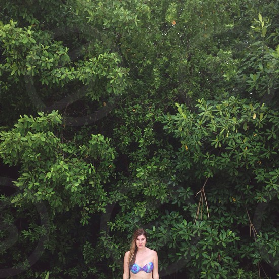 woman in 2 piece suit standing near green tree leaves photo