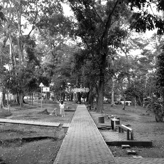 grayscale photo of walk path photo