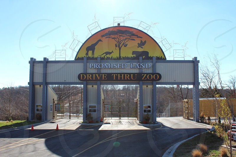 Promised Land Zoo in Branson Missouri photo