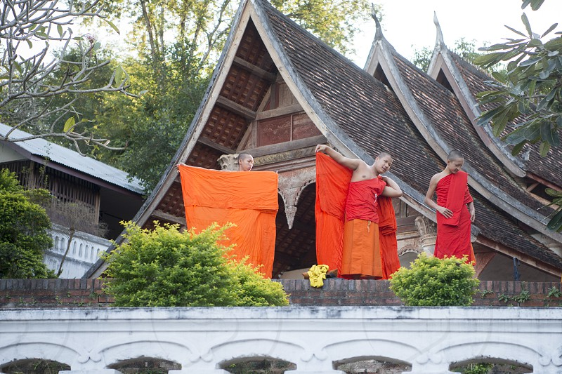 young monks at a Temple in the town of Luang Prabang in the north of Laos in Southeastasia. photo