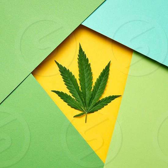 Paper multicolored frame of green natural marijuana leaf with copy space. Concept use of marijuana for medical puposes. photo