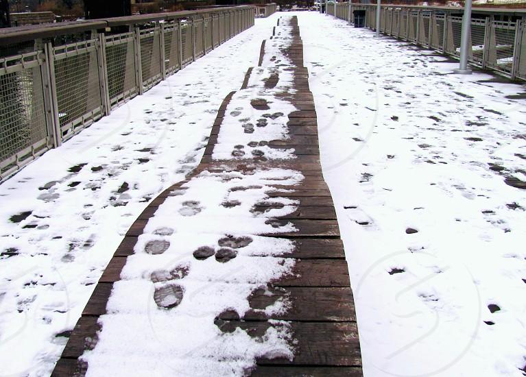 brown wooden walkway photo