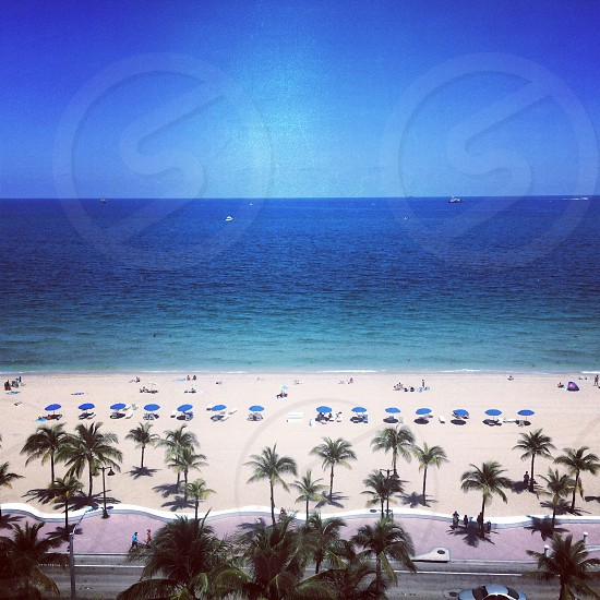 Ft. Lauderdale at the W hotel  photo