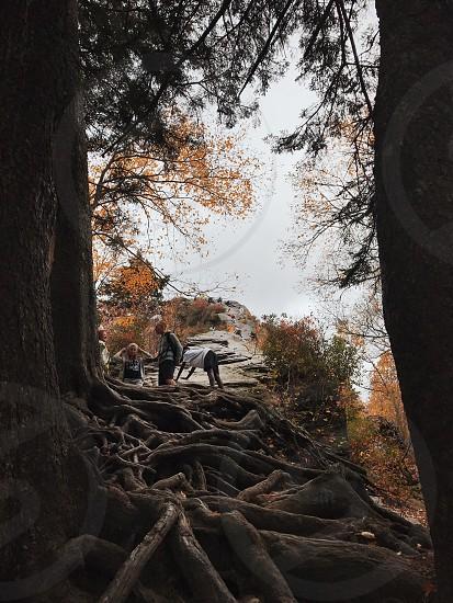 Smoky Mountains - Gatlinburg TN photo