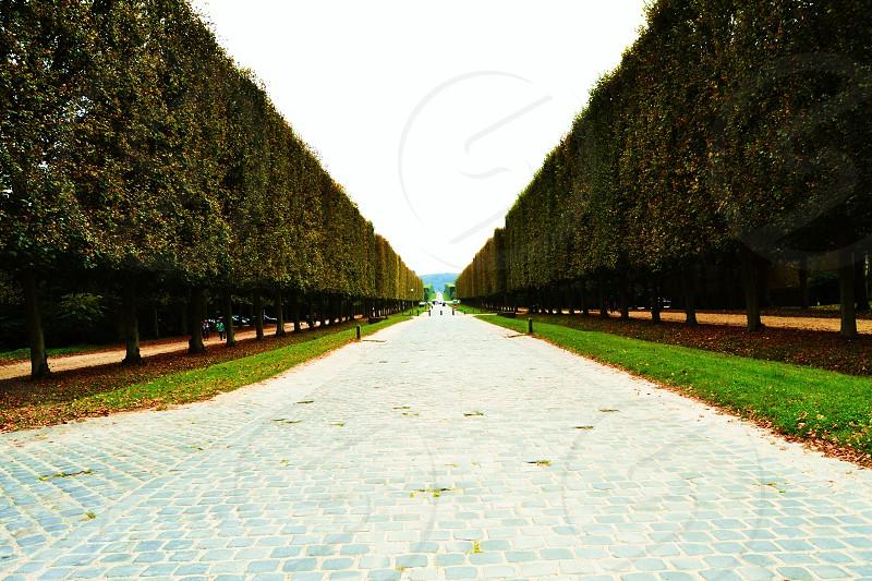 Versailles photo