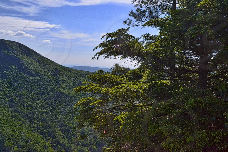 The beautiful landscape scene from the Pisgah National Forest. photo