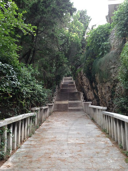 Forest steps in Split Croatia photo