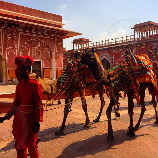 Parade at the Royal Palace Jaipur India photo