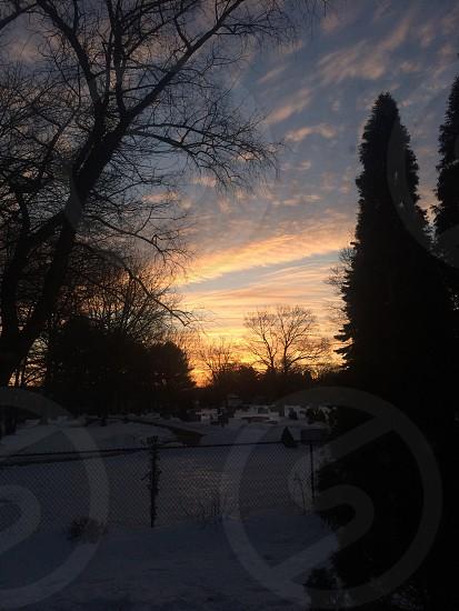 Sunrise on February 27 2014. Winter seasons cemetery silhouette sunrise beauty nature photo