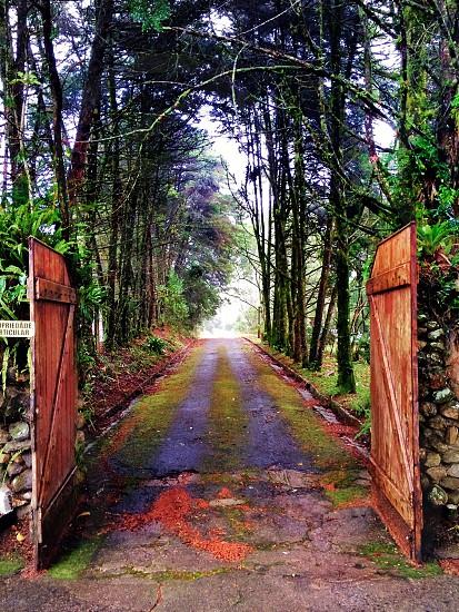 Gate to Heaven photo