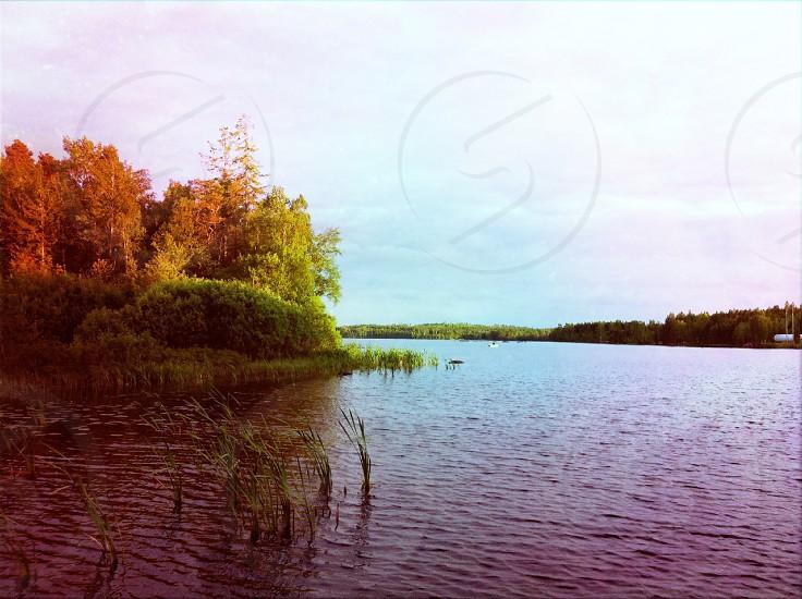 A Swedish lake.  photo