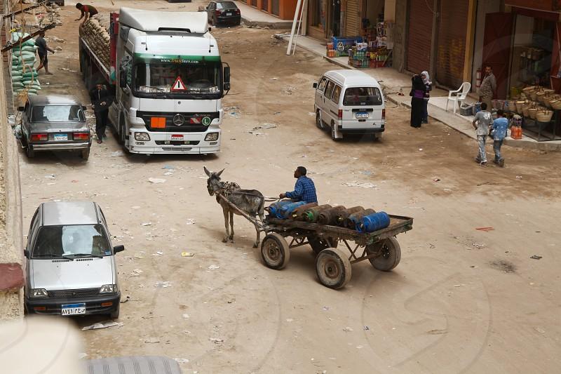 donkey pulling wagon photo