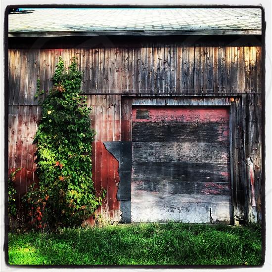 Rustic barn photo