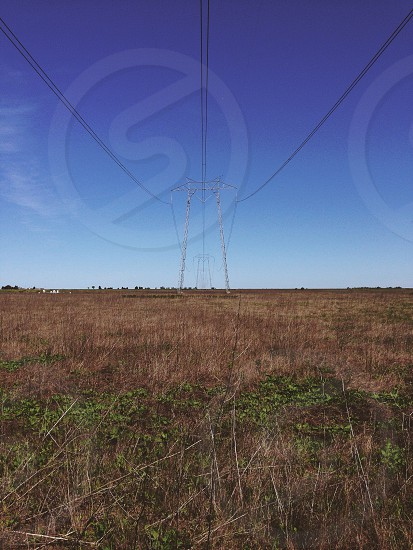 green and brown grass near electric tower photo