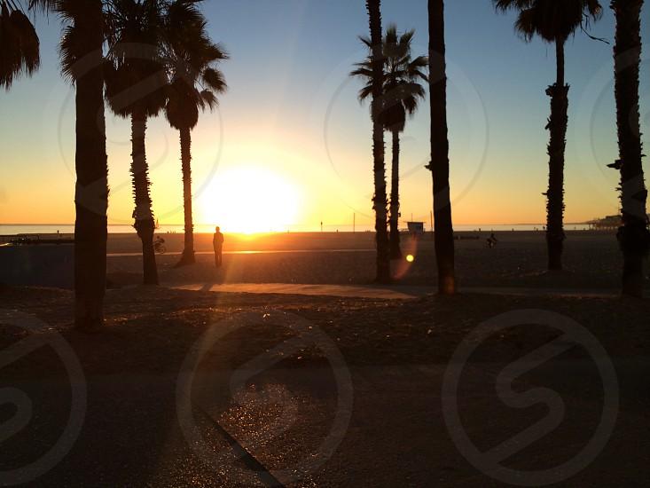 California beach sunset photo