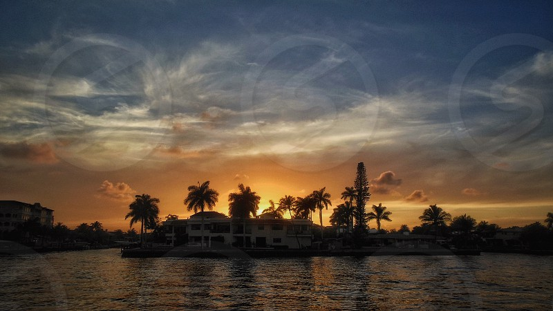 #sunset #landscape sunset #palm trees #Florida #water   photo
