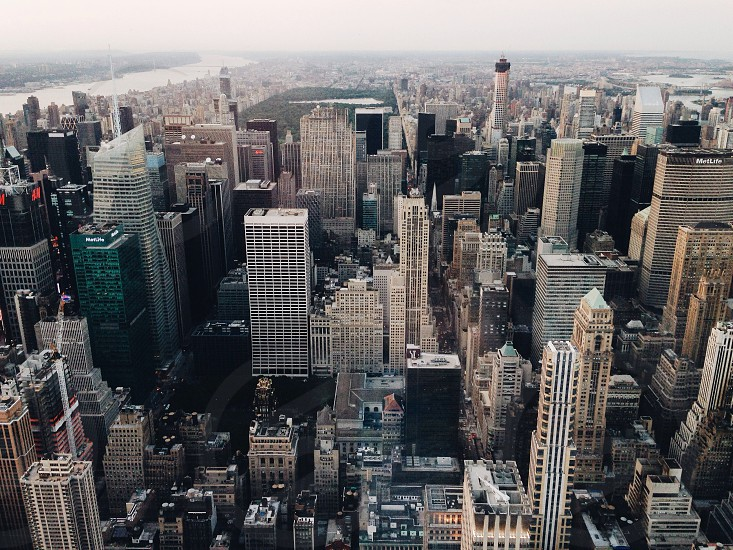 city buildings in new york city photo
